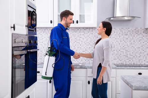 In Home Pest Control Melbourne